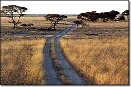 Ph©to: Tourist Office Botswana
